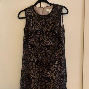 Loft lace black mini dress